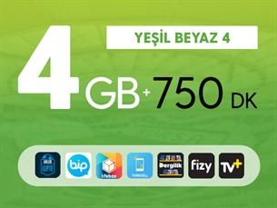 Satın Al Kurumsal Yeşil Beyaz 4GB