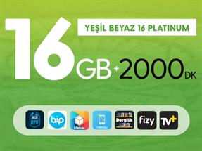 Kurumsal Yeşil Beyaz 16GB Platinum